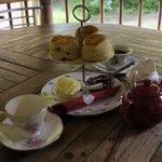 A very nice Cream Tea