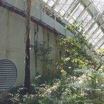 the Bicentennial Conservatory
