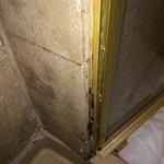 Mold inside shower