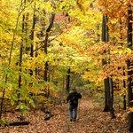 Van Buren SP Trail