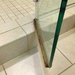 shower door mold