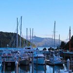 Picton Marina a little 5 minute leasurly walk from Kippilaw House