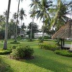 Garden towards beach