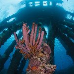 Underwater Pier