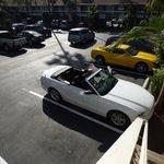 Plenty of parking bays
