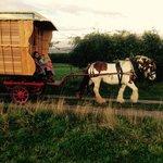 Meg pulls the new wagon