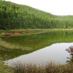 Lagoas Empadadas
