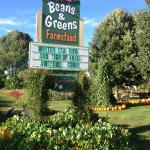 Beans & Greens Farm