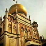 Tur Pribadi - Indie Singapore