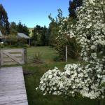 Amazing gardens - spring at its best
