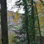les ruines du château de Morimont à 500m