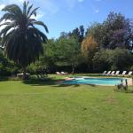 Pool mit wunderschönem Garten