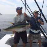 ~50lb Yellowfin Tuna