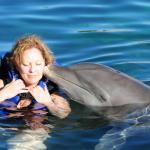Dolphin kissing