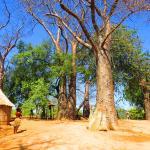 Mafwe Living Museum