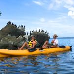Kayaking Magen's Bay & Boobie Birds