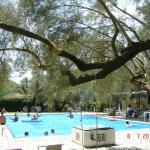 thalero swimming pool