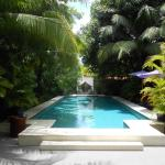 Vue de la piscine depuis le hall de l'hôtel