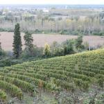 la vallée de la Garonne