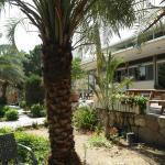Foto de Arava Hostel Eilat