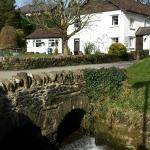 Bridge Cottage Tea Room + B&B, Winsford, Exmoor.