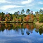 Fall Foliage on Pond
