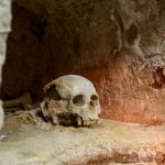 skull in crypt