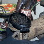 Mopani worm dish at the Boma Restaurant