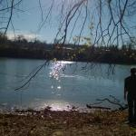 Monongahela River from the Core Arboretum