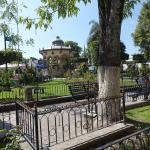 Jardin Hidalgo 12