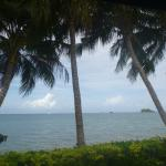 View from the beachfront bure