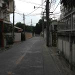 Zdjęcie 3461673