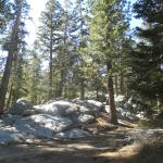 Views from easy loop trail.