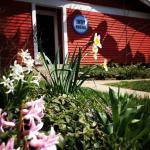 Spring Hostel
