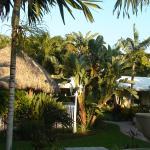 Blick von Terrasse in den Garten und Tiki-Bar