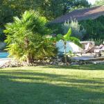 piscine et alentours