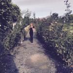 beautiful gardens to walk
