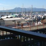 View of the harbour, a dream come true I'm sure! Cow Bay Marine Pub  |  1695 Cowichan Bay Road,