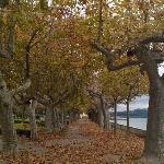 Il lungolago di Marta in autunno!!! Meraviglioso, ameno, tranquillo - Emanuele Carioti