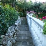 Escalier menant du parking au jardin