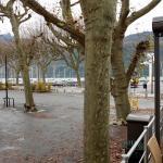 port et lac vu de la terrasse des voiles