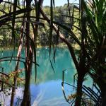 Lake Barrine
