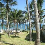 View from the hotel grounds towards the palm-fringed beach