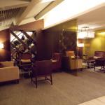 Bar en el ultimo piso del hotel