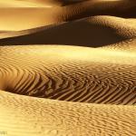 Curves  -  Mesquite Flat Sand Dunes