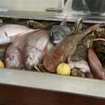 Nuovo banco espositore,pesce fresco tutti i giorni!!!!