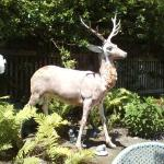 Deer statue in outside seating