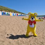 Woolly Bear loves the beach huts!