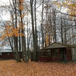 Adirondack Cabin/ October 2014