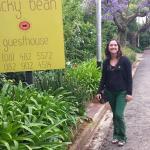 Entrada e rua florida com os jacarandás